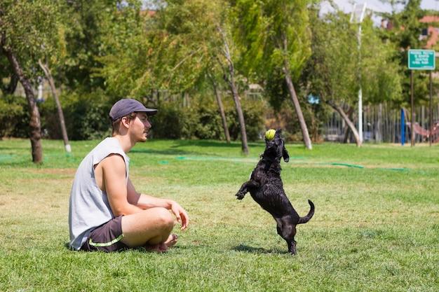 Jovem sentado na grama e um cachorro preto pulando com uma bola de tênis na boca proprietário masculino brincando com um animal de estimação no parque em um dia ensolarado