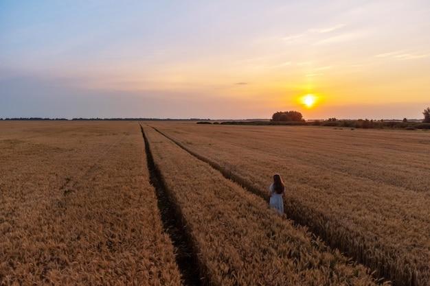 Jovem solitária caminhando no campo de centeio ao pôr do sol
