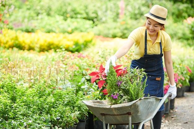 Jovem trabalhador de viveiro de plantas sorridente empurrando carrinho de mão cheio de plantas