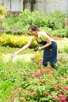 Jovem trabalhador do centro de jardinagem pulverizando plantas e flores com água