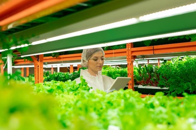 Jovem trabalhadora de estufa em trajes de trabalho de proteção usando tablet enquanto se move ao longo das prateleiras com mudas verdes crescendo na fazenda vertical