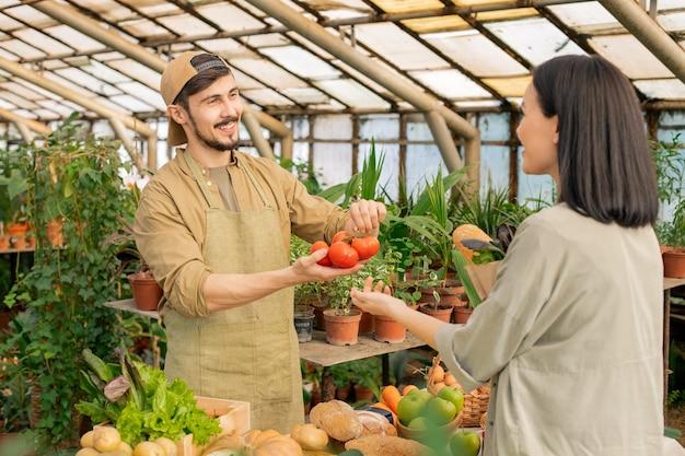 Jovem vendedor de alimentos orgânicos barbudo positivo em avental mostrando tomates ao cliente enquanto os vende no mercado de agricultores