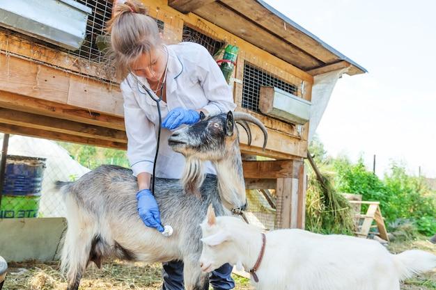 Jovem veterinária com estetoscópio segurando e examinando a cabra no rancho