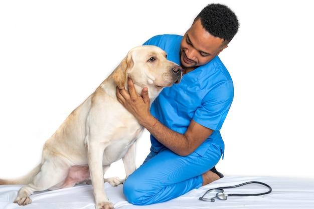 Jovem veterinário com um cão labrador