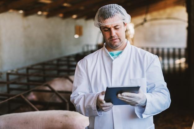 Jovem veterinário masculino em roupas estéreis brancas em pé no leitão e olhando para o tablet.