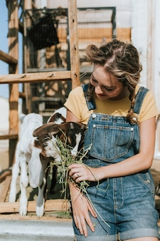 Jovem voluntário alimentando cabritos