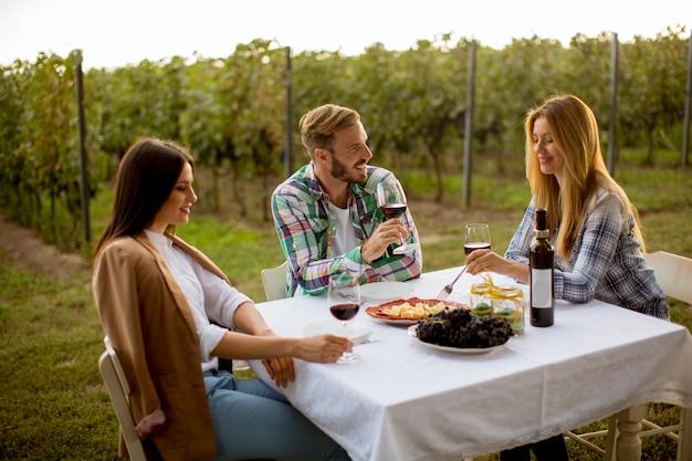 Jovens à mesa na vinha