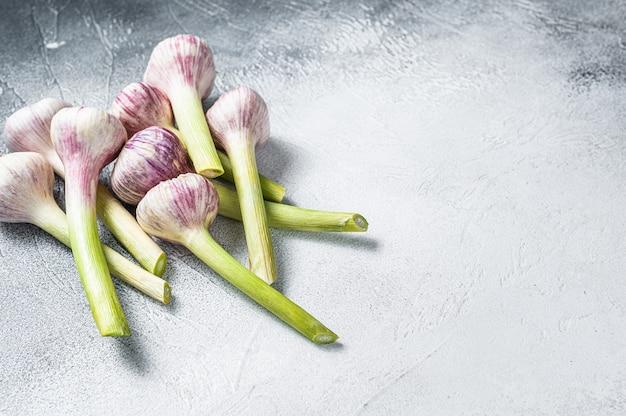 Jovens bulbos de alho primavera na mesa da cozinha