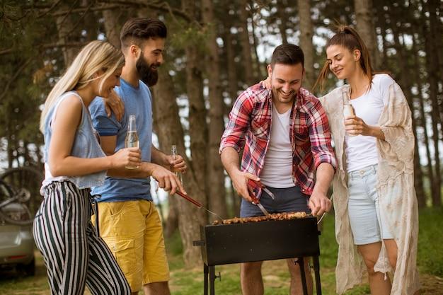 Jovens, desfrutando, churrasco, partido, natureza