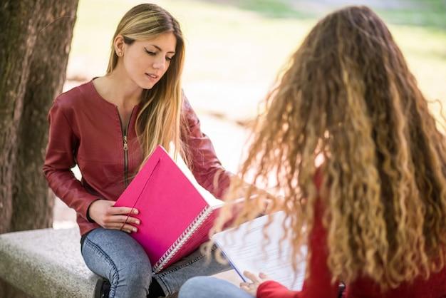 Jovens estudantes estudando juntos ao ar livre