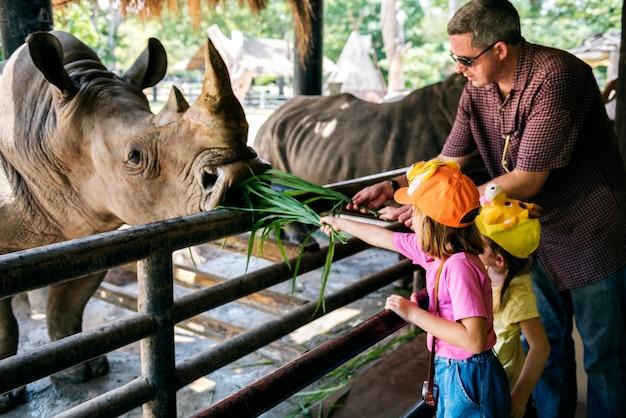 Jovens garotas caucasianas alimentando o rinoceronte no zoológico
