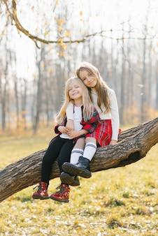 Jovens irmãs sentadas em um tronco de árvore