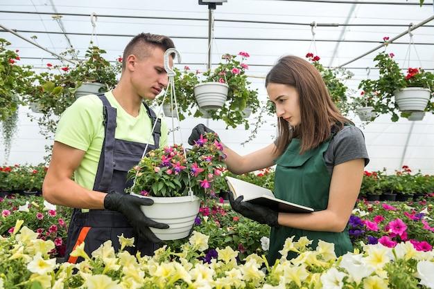Jovens trabalhadores em uma estufa alimentam flores. o conceito de cuidar das plantas