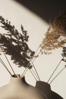 Junco seco da grama dos pampas em um vaso elegante. sombras na parede. silhueta na luz do sol