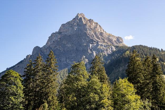 Kandersteg suíça - vista do pico de bire no verão