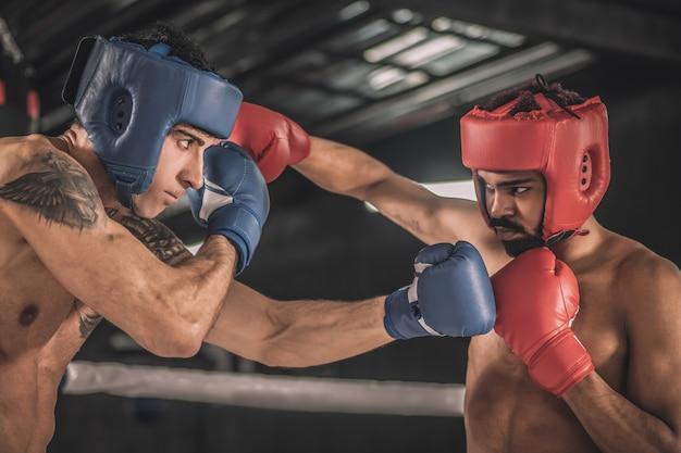 Kickboxing kickboxers em hemlets protetores lutando e parecendo determinados