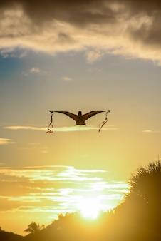 Kite do sol