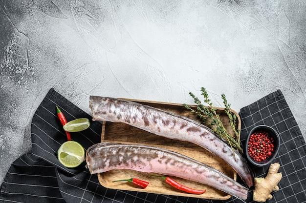 Klip rei cru, peixe congrio com ingredientes para cozinhar