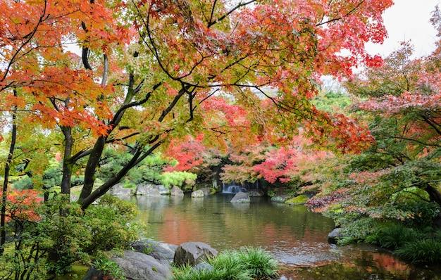 Kokoen, jardim japonês tradicional durante a temporada de outono em himeji, japão