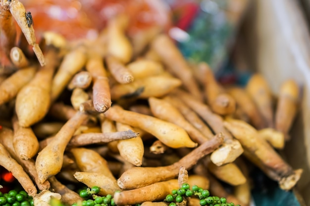Krachai é um vegetal de especiarias para a culinária tailandesa.