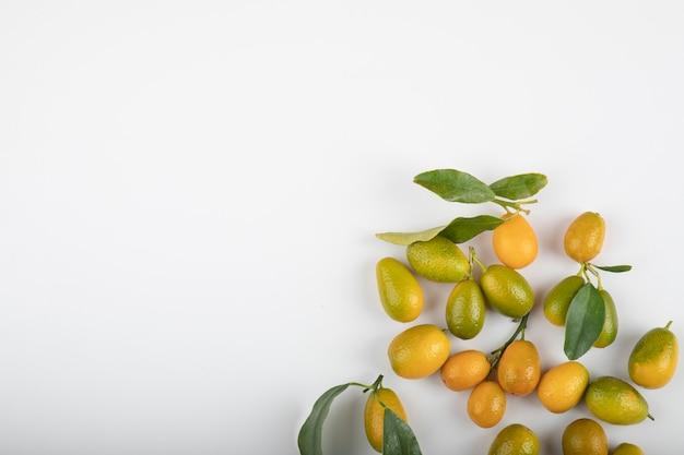 Kumquats maduros frescos com folhas no fundo branco.