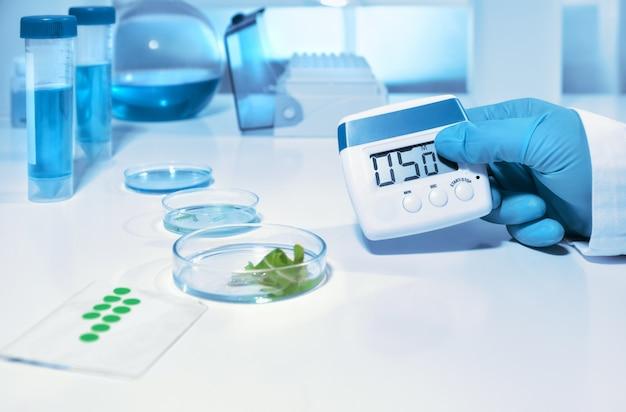 Laboratório biológico ou bioquímico, closeup na mão enluvada, segurando o temporizador digital