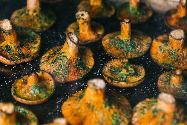 Lactarius deliciosus. tampa de leite ou cogumelo de pinho vermelho no churrasco