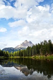 Lago antorno e floresta verde
