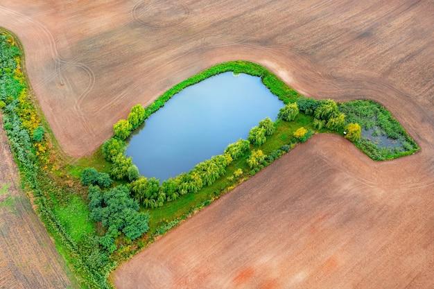 Lago azul no meio de um campo, um lago entre árvores em um campo, paisagem de verão