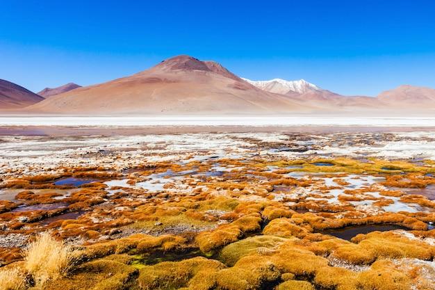 Lago, bolívia altiplano