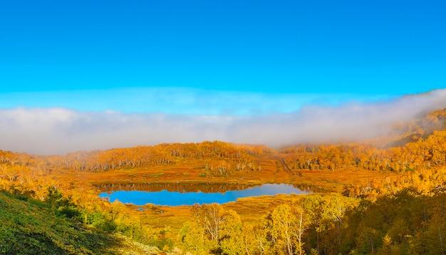 Lago bonito da floresta no dia do outono.