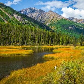 Lago bonito incomum no vale das terras altas e o rio ao longo da alta montanha. marés pantanoso do lago de montanha. fundo natural atmosférico amarelo das terras altas.