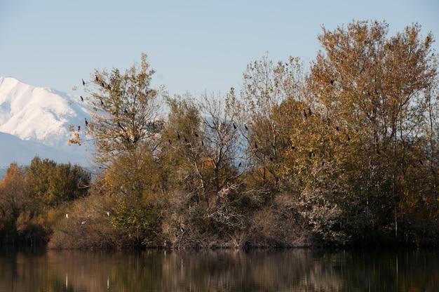 Lago campo montanha azul outono lagos