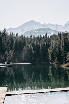 Lago cercado por montanhas e florestas com árvores refletindo na água