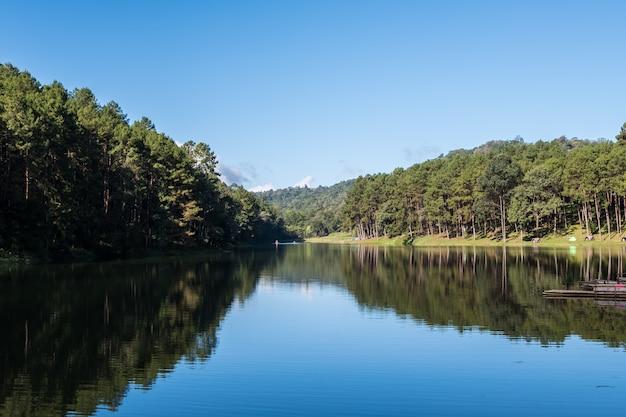 Lago claro com o reflexo no parque nacional.