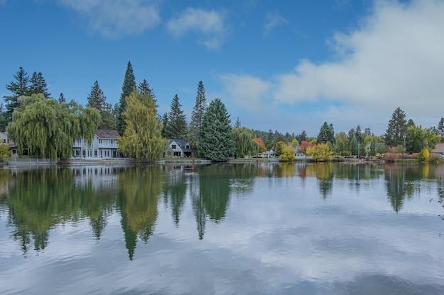 Lago claro com reflexo de nuvens cercado por floresta