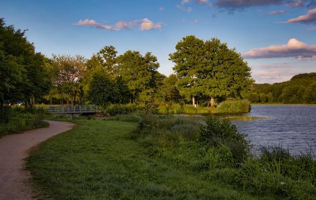 Lago com árvores ao entardecer