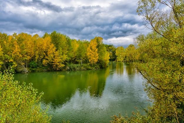 Lago com árvores refletidas na água