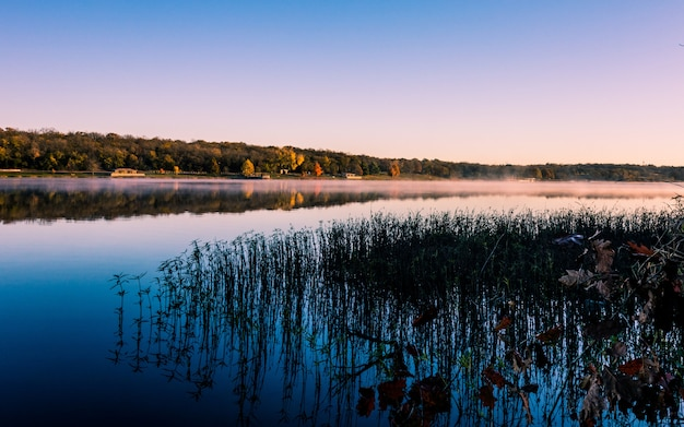 Lago com grama refletindo na água rodeada por florestas cobertas de nevoeiro durante o pôr do sol