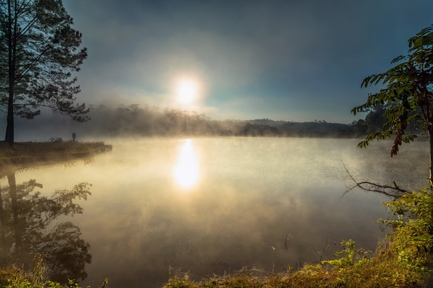 Lago com manhã nevoenta com fundo de paisagem de montanha quando o tempo do amanhecer em pinho