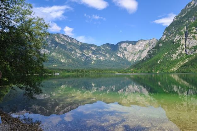 Lago de montanha bohinj. eslovênia, alpes julianos, parque nacional de triglav. vista panorâmica para o lago e rock