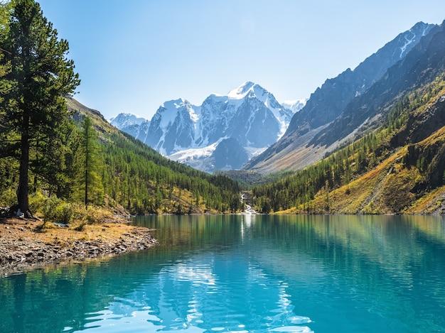 Lago de montanha claro incrível na floresta entre os abetos no sol. cenário brilhante com belo lago turquesa no contexto das montanhas cobertas de neve. lago shavlin inferior
