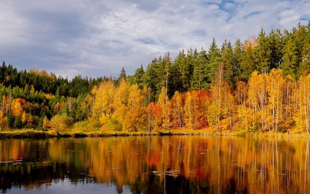 Lago de montanha com pinheiros e bétulas na temporada de outono