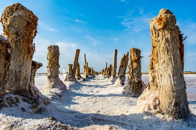 Lago de sal rosa no sul da ucrânia.