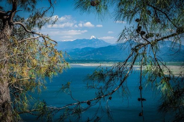 Lago e montanhas vistos através dos galhos das árvores