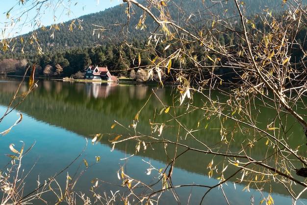 Lago e uma floresta na montanha na área rural