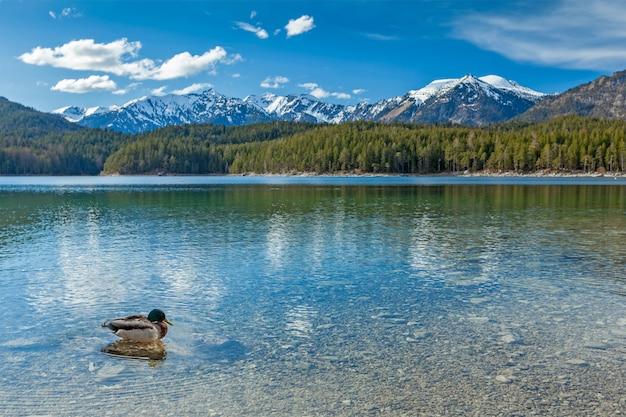 Lago eibsee, alemanha