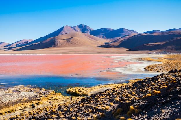Lago laguna colorada