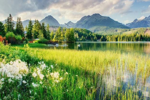 Lago majestoso da montanha no parque nacional tatra alto.