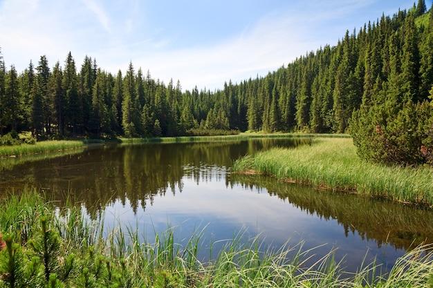Lago marichejka de montanha no verão e reflexão de floresta de abetos (ucrânia, cordilheira chornogora, montanhas dos cárpatos)